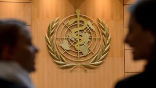 日内瓦万国宫会议厅内的世界卫生组织标志(21/5/2012)