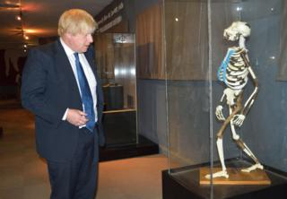 "British Embassy in Ethiopia shows British Foreign Secretary Boris Johnson watching a plaster replica of the reconstructed skeleton of early australopithecine ""Lucy"""
