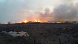 Wildfire on Sunday night