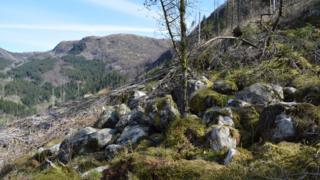 A view of some rocks on the Isdalen Valley, where the Isdal Woman was thought to have been found in 1970