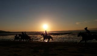 Horses on Musselburgh beach