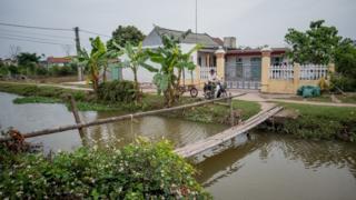 段氏香41歲兄長段文炳(Doan Van Binh)開著他的摩托拖車經過他們家的住房(24/2/2017)