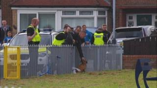 The dog, tied to a fence in the park, as police and onlookers gather round