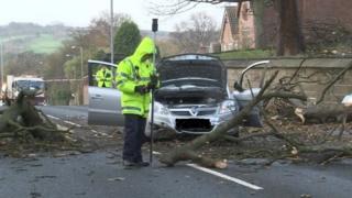 Tree branch in front of Davison's car in Wakefield