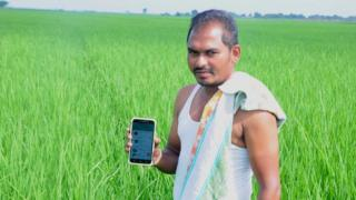 Rice farmer Voruganti Surendra in paddy field