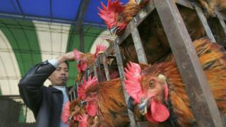 Poultry, China