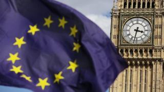 Parliament and EU flag