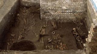 Skeletons, St John's College, Cambridge