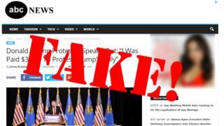 Fake news screengrab