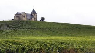 This file photo taken on September 23, 2007, shows a champagne vineyard in Villenauxe-la-Grande, near Epernay, eastern France.