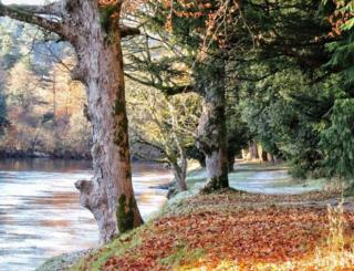 Autumn scene at Dunkeld House Hotel