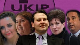 UKIP leadership candidates