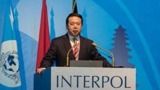 去年国际刑警组织选出中国公安部副部长孟宏伟当主席