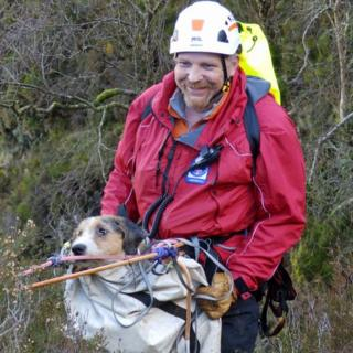 Dog rescued from gorge