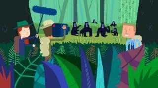 Sir David Attenborough's animated stories