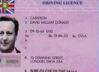 David Cameron's photo on a fake driving licence