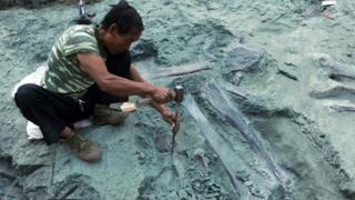 Археологические раскопки в Китае