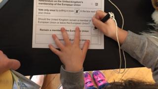 The tweet showed Claire Hanna's daughter holding a pencil with her hand on the ballot paper for the EU Referendum
