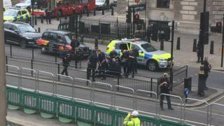 Armed police arrest a man in Whitehall