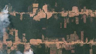 Ocupação em Rondônia