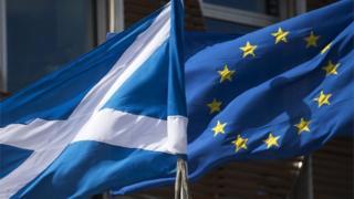 Scottish and EU flags