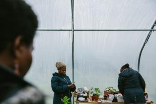 Participants plant seeds on a table in the polytunnel
