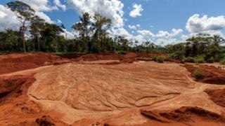 Large areas of forest have been cut down for mining