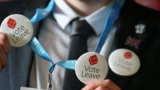 Vote Leave campaigner