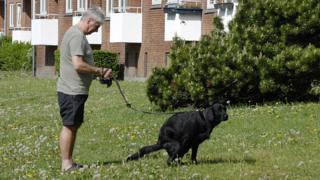 Чоловік вигулює собаку