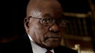 Jacob Zuma, Afrique du Sud