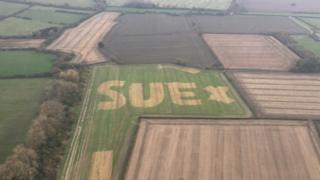 Sue in field