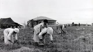 미군이 1953년 6월 16일 촬영한 판문점 사진. 아이를 등에 업은 아낙이 농사일에 한창이고, 등에 업힌 아이는 카메라를 바라보고 있다. 아이 뒤로 보이는 건물이 휴전회담이 이뤄진 회담장이다