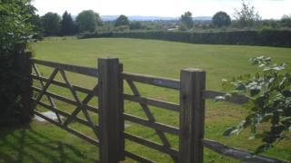 View across meadow
