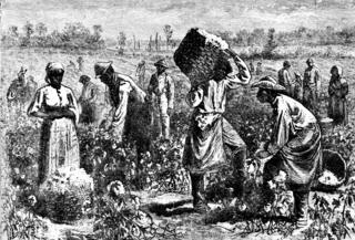 Transatlantic Slave Trade | Sutori