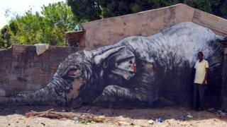 """Amadou Soule is disappointed he hasn't financially benefitted from ROA painting an elephant on the side of his house, apart from the odd tip from a tourist. """"I was hoping for a sponsor for my teacher training""""."""