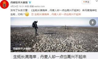 丹麥駐華大使館在中國微博上發文