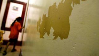 La pintura en las paredes.