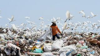 A Sri Lankan worker sorts garbage at a dump in Karadiyana, a suburb of Colombo on April 20, 2017, after the city's main landfill closed after a garbage mountain collapsed killing 32 people and destroying 145 homes. The Colombo municipality obtained permission from court to override protests from local residents and move garbage to Karadiyana as a temporary measure until a permanent solution to Colombos garbage problem is found. / AFP PHOTO / Ishara S. KODIKARA (Photo credit should read ISHARA S. KODIKARA/AFP/Getty Images)