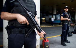 Turkish police (file image)