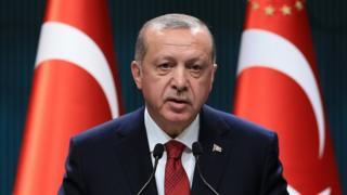 A handout photo made available by the Turkish Presidential Press Office shows Turkish President Recep Tayyip Erdogan speaks during a press conference at at the Presidential Palace in Ankara, Turkey