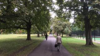 Trees in Tooting Common