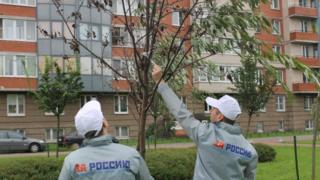 All-Russia People's Front volunteers find branches taped to trees in St Petersburg
