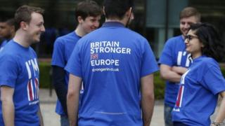 Supporters of Britain Stronger in Europe