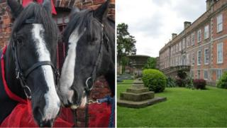Shire horses Jim and John and Erddig house