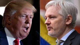 美國新選總統特朗普支持維基解密創始人阿桑奇