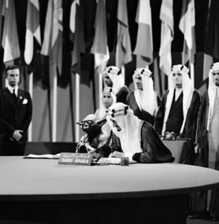 United Nations (Yoda) - 2013