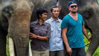 Leonardo DiCaprio with elephants in Leuser National Park