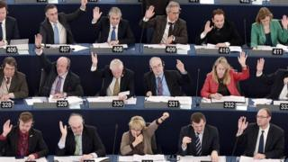 Voting in the European Parliament, December 2014