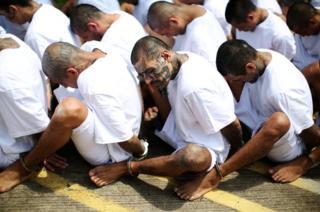 Mara Salvatrucha gang members wait in a row at a prison in El Salvador