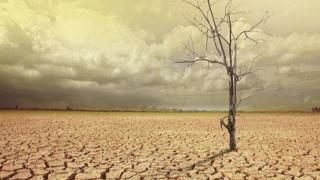 ایران با بهره برداری از ۹۷ درصد آبهای سطحی خود در واقع تمام رودخانههای خود را خشکانده است و دیگر آبی در طبیعت باقی نمانده است